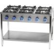 Kuchnia gastronomiczna gazowa 6-palnikowa 979621