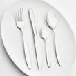 Nóż stołowy SEGURA - 355780